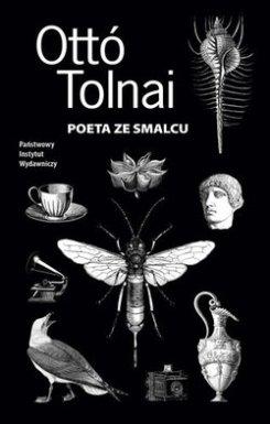 tolnai_d